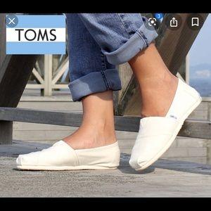 TOMS Women's classic canvas